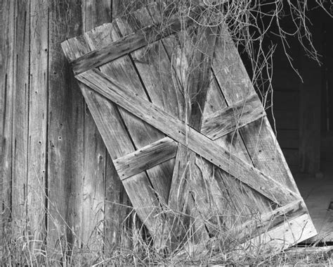 Science Is Growing Agbcs X Marks The Barn Spot Barn Doors Photography