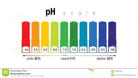 ph color scale the ph color scale stock illustration illustration of