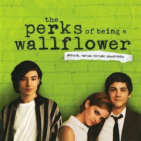 stephen miller nz the perks of being a wallflower nz film freak