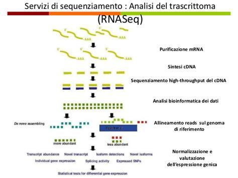 librerie genomiche pasquale saldarelli la piattaforma genomica di