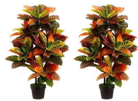 Artificial Croton Tree Artificial Potted Trees » Home Design 2017