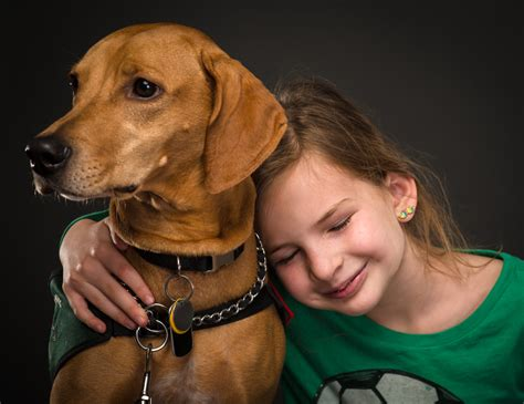 learn how to service dogs how service dogs help learn to read rover