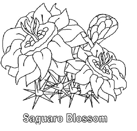 Free The Arizona State Flag Coloring Pages Arizona Coloring Page