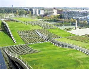 green roof france requires all new buildings to have green roofs or solar panels inhabitat green design