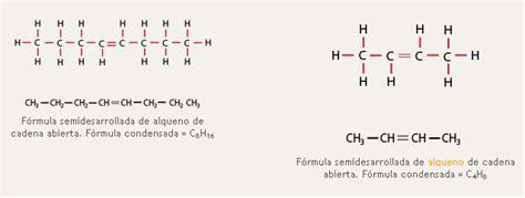 cadenas abiertas o lineales ejemplos qu 237 mica 1 2 carbono en los alimentos portal cch