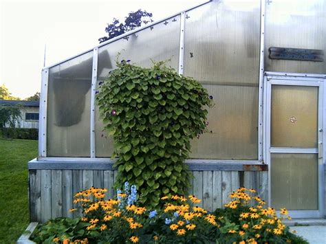 greenhouse bedroom building a lean to greenhouse greenhouse plans home