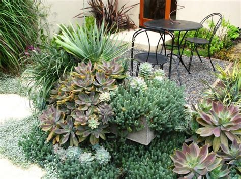 Patio Plants For Shade by The Best Outdoor Plants For Shaded Areas