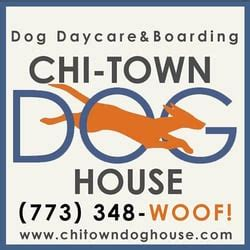 chitown dog house chi town dog house pet boarding pet sitting chicago il yelp