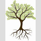 Family Tree Roots Background   528 x 719 png 455kB