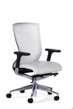 Balance Chair With Arms by Balance Chair Polished Alloy Base With Arms White Office Chairs
