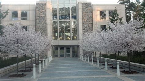 Haas School Of Business Mba Deadlines by Duke Fuqua School Of Business Top Mba Admission