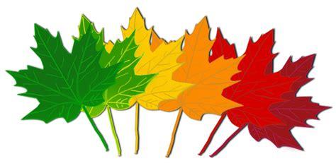 clipart autumn leaves leaf november leaves clipart clipartix clipartix