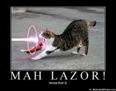 Laser Cat Meme - image 75489 cat gun know your meme
