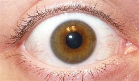 Keep Your Eyes Open For Spot The Differences Party On Eyeball Pics