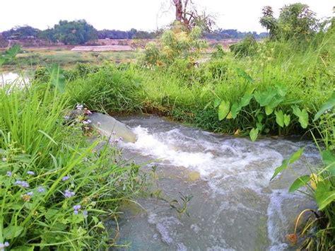 sistemi di irrigazione per giardino impianto di irrigazione fai da te impianto irrigazione