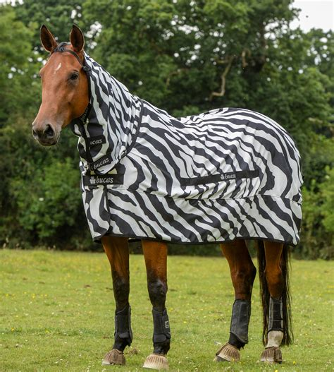 zebra fly rugs for horses 100 zebra fly rug sweet itch rugs for sale roselawnlutheran fly rug bonny fly rugs