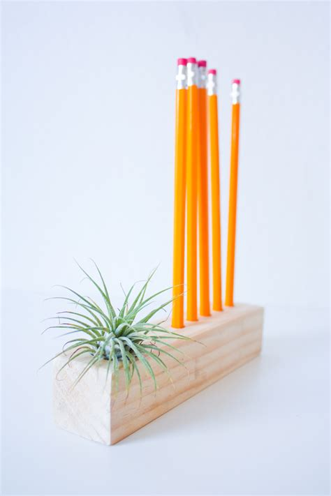 Plant Holder - simple pencil and air plant holder diy