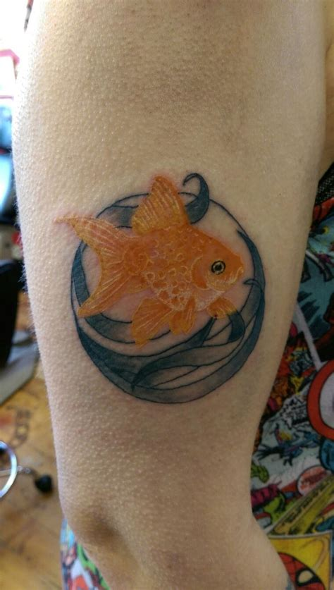 goldfish tattoo designs 1000 ideas about goldfish on fish