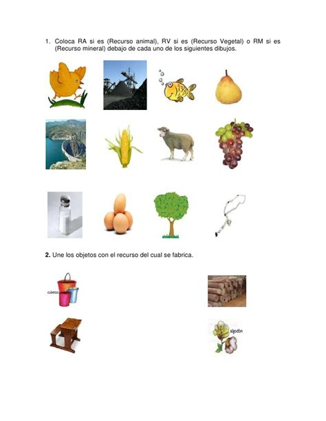 imagenes de objetos naturales recursos naturales y los productos que se obtienen de