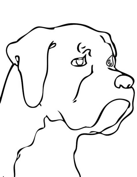 easy to dogs simple line drawings www imgkid the image kid has it