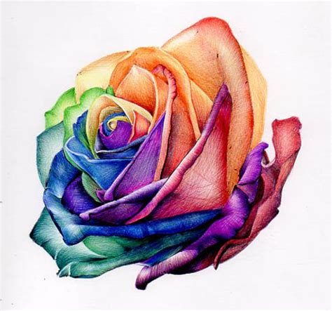 %name rose art colored pencils   Learn to Draw & Color with RoseArt Colored Pencils   Rose Art