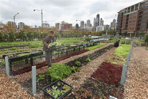 Starting A Community Garden by The Real Value Of Farming Hint It S Not Always The Food Vox