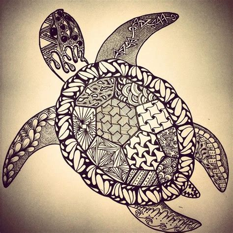 turtle pattern drawing tumblr ndgt4opf5r1rzqa0vo1 1280 jpg 640 215 640 zentangle