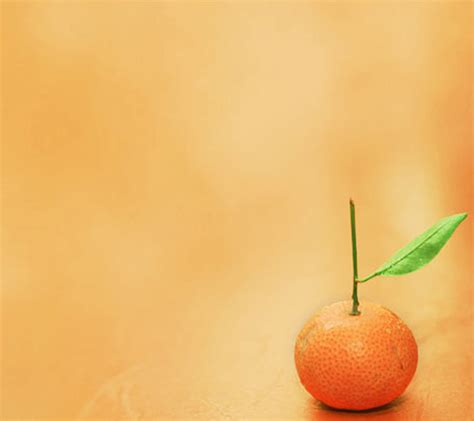 wallpaper android orange orange android wallpapers 960x854 mobile phone pictures