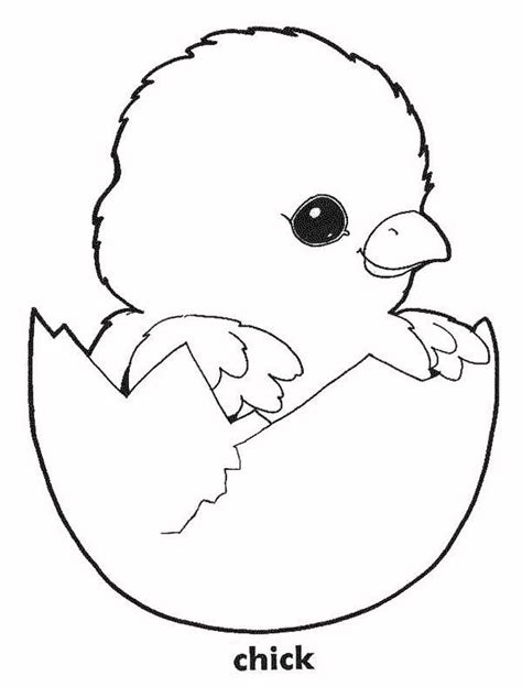 chicken coloring page free printable top 66 chick coloring pages free coloring page