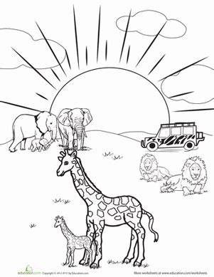 safari animals coloring pages preschool safari coloring page safari animals worksheets and