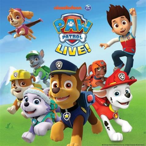 Mainan Track Paw Patrol Rescue Run Racing No 229 22 paw patrol live race to the rescue in denver co dec 17 2016 3 30 pm eventful