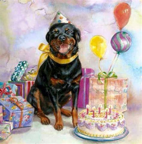 rottweiler birthday wishes happy birthday carl rottweilers rottweiler rottweilers and