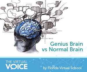 How To Be A Genius Your Brain And How To It einstein brain vs normal brain pictures to pin on pinsdaddy