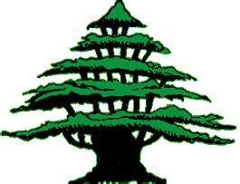il giardino dei cedri il giardino dei cedri il verde edizioni