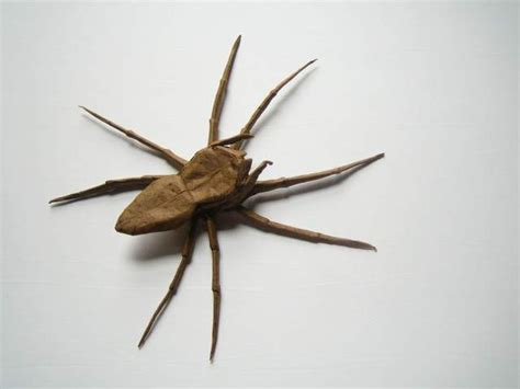 How To Make Spider Origami - spider origami origami