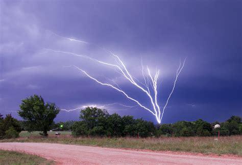 lighting tree tree lightning by bvilleweatherman on deviantart