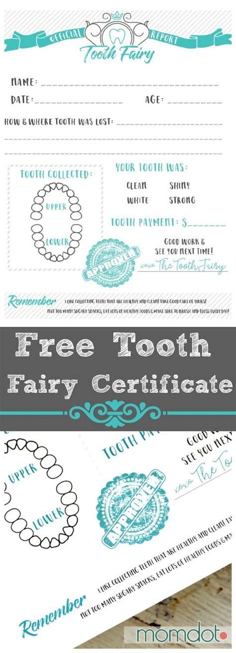 free printable tooth certificate template tooth free printable certificate printable