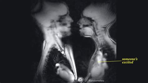 imagenes love and sensuality this is what sex looks like inside an mri scanner nsfw