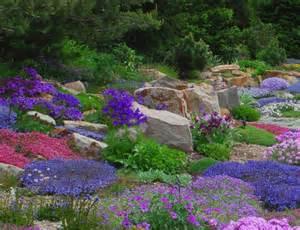 Flowers For Rock Gardens Alpine Perennials The Rock Garden Companion