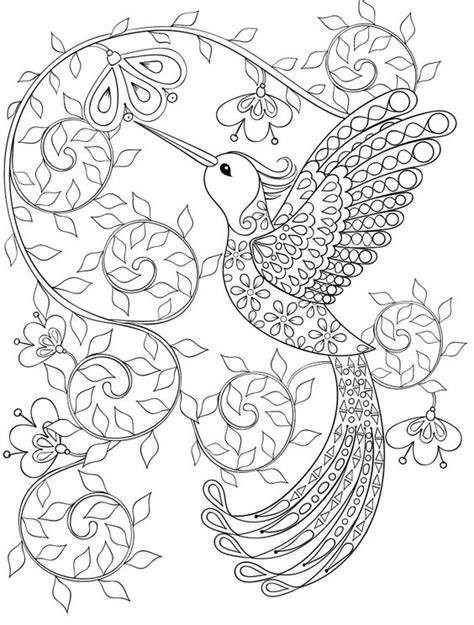 hummingbird coloring page 20 gorgeous free printable coloring pages page 11