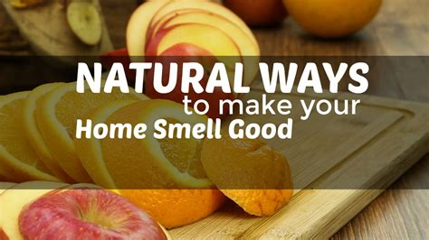 how to keep your house smelling good with a dog natural ways to make your home smell good