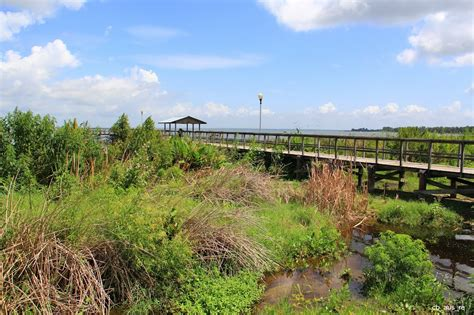 Winter Garden Fl County by Panoramio Photo Of Lake Apopka Lakeview Park Winter