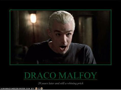 Draco Memes - draco memes 28 images the gallery for gt funny harry