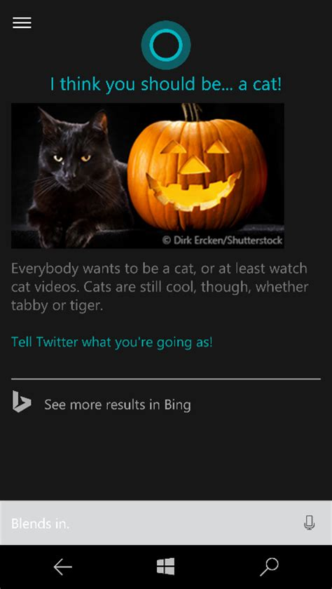 what is your favorite number cortana halloween blog p1b 102615