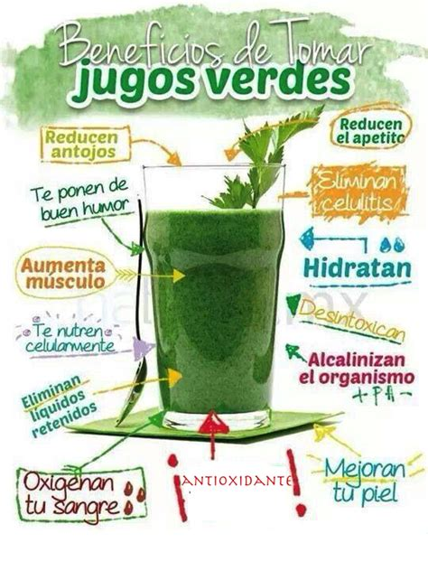 Jugos Detox Recetas by Beneficios Jugo Verde