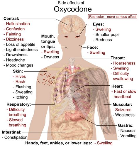 Detoxing From Oxycodone With Methadone by Oxycontin Methadone Negative Side Effects And Symptoms