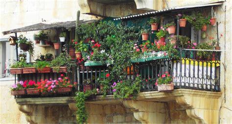 fiori sui balconi fiori ci sono sui vostri balconi blossom zine