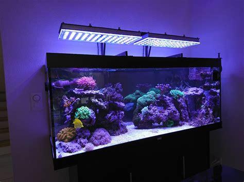 What Aquarium Led Lights Do I Chose For My Aquarium Orphek Aquarium Led Light