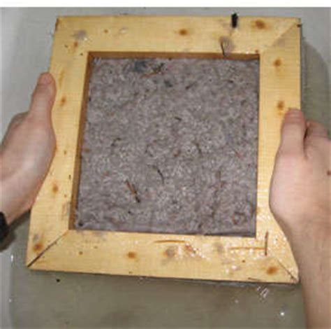 Make Paper From Dryer Lint - turn dryer lint into paper the go green