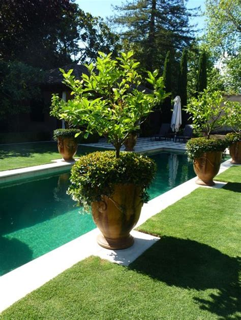 backyard landscaping melbourne pinterest the world s catalog of ideas